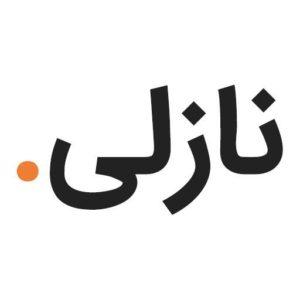 نازلی ابراهیمی مشاور مدیریت - وب سایت شخصی نازلی ابراهیمی